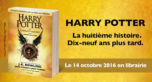 Soiree Harry Potter Le 13 Octobre A L Heure Du Jeu Actusf