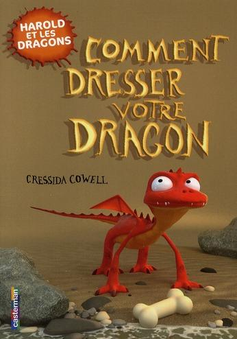 Photo de Comment dresser votre dragon ?