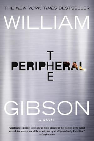 Périphérique de William Gibson bientôt adapté