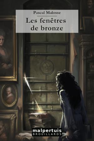 Les Fenêtres de bronze, le roman de Pascal Malosse