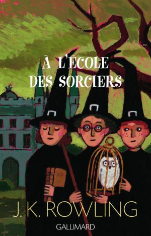 Harry Potter - Les premières éditions françaises étaient allégées
