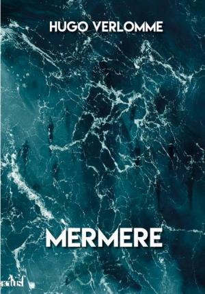 Mermere de Hugo Verlomme disponible à la précommande
