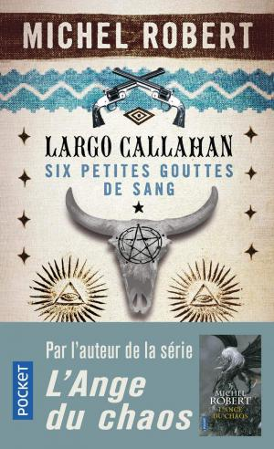 Un trailer pour Largo Callahan de Michel Robert