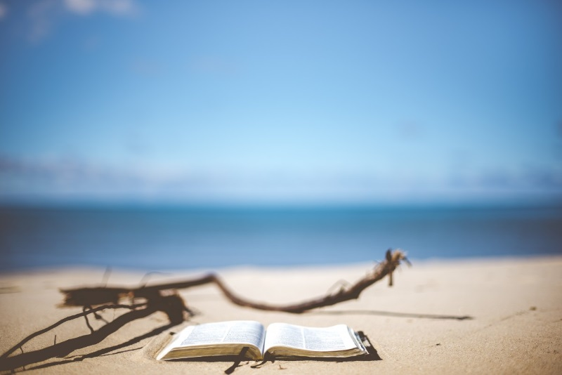 Photo de Top des livres jeunesse à la plage